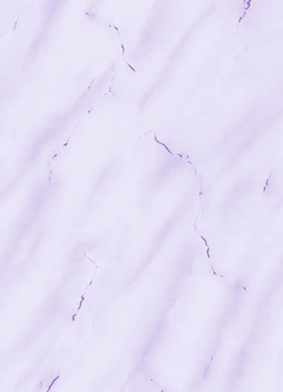 Мрамор фиалка