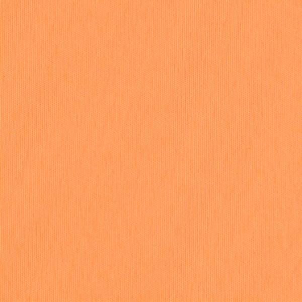 Ткань для рулонных штор / рольштор ЭКО 955