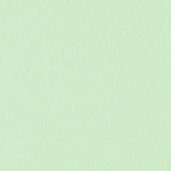 Ткань для рулонных штор / рольштор ЭКО салатовый 27