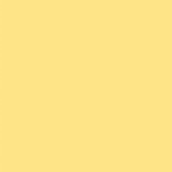 Ткань БЛЭК АУТ для рулонных штор и рольштор - НАТАЛИ ВО 04 лимонный
