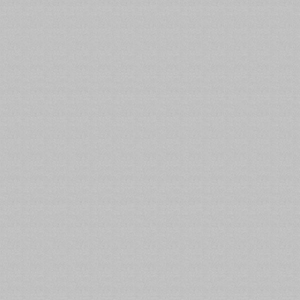 Ткань для рулонных штор и рольштор - РЕСПЕКТ 06